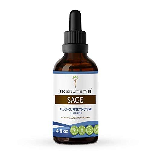 Sage Alcohol-Free Liquid Extract, Organic Sage (Salvia officinalis) Dried Leaf Tincture Supplement (4 FL OZ)