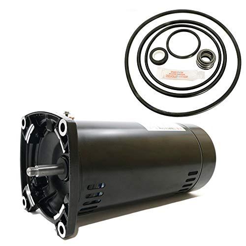 Puri Tech Sta-Rite Dyna-Glas 1.5HP MPRA6F-148L Replacement Motor Kit AO Smith USQ1152 w/GO-KIT-47