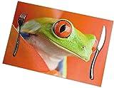 Set di 6 tovagliette da tavolo con occhi rossi, facili da pulire, resistenti, antiscivolo, resistenti al calore, resistenti al calore (45,7 x 30,5 cm)