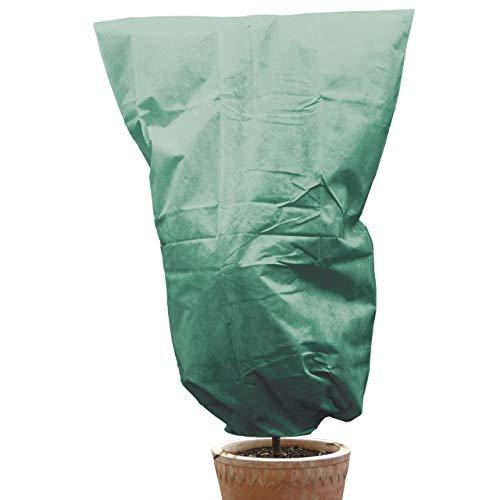 AFP Winterschutz Vlieshaube grün, 200 x 240cm, 70g/qm - XXL-Kübelpflanzensack Gartenvlies Atmungsaktiv für Olivenbäume, Palmen/Frostschutz Pflanzen/Kordel / 2 Jutesäckchen Gratis