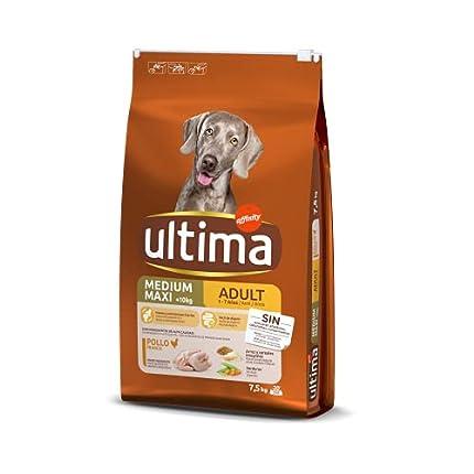 ultima Pienso para Perros Medium-Maxi Adulto con Pollo - 7,5 kg