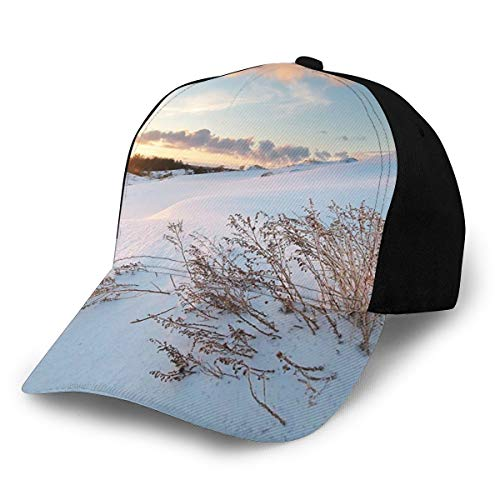 Cap Hat Unisex Landscape Winter Scenery with Mountains Hills Full of Snow Leafless Beanches Photo Sky Blue and White Fashion Plain Adjustable Baseball Sun