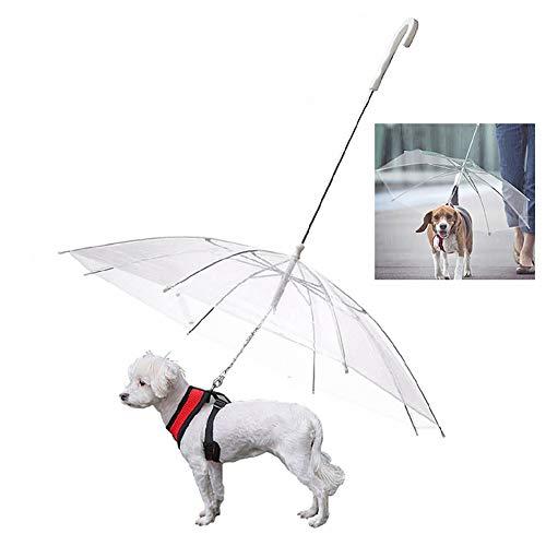 WU Paraguas Plegable para Perros con Correa, para Nieve y Lluvia, Transparente, para Mascotas Que Caminan al Aire Libre