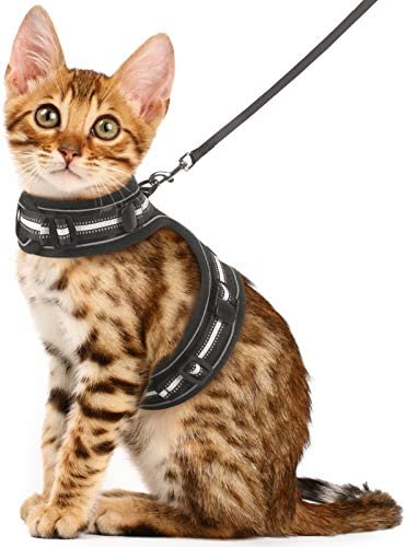 rabbitgoo Cat Harness and Leash for Walking Escape Proof Adjustable Vest with Reflective Strip product image