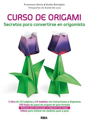 Curso de Origami (PRÁCTICA)