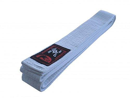 Karategürtel Judogürtel Taekwondogürtel weiß (200)