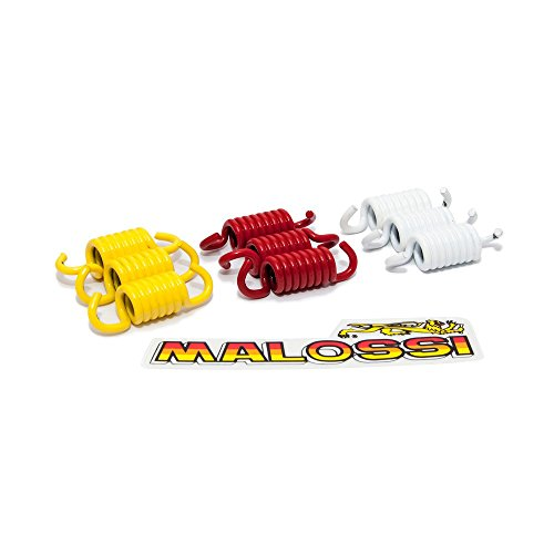 Kupplungsfedern Malossi für Honda, Piaggio, Yamaha Piaggio Leader/Quasar 125-300ccm 4-Takt Motoren