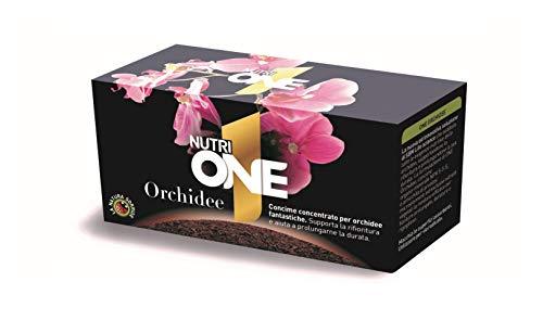Nutri 1 One One Concime concentrato per Orchidee in Grado di farle fiorire e prolungarne la Durata, Scuro