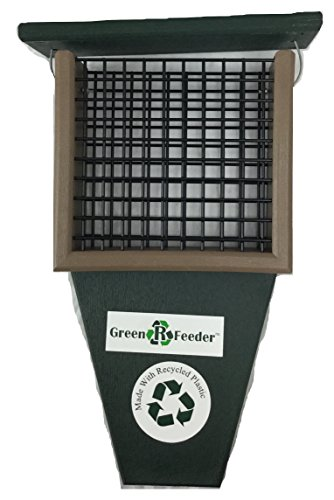 Rubicon Suet Feeder with Tail Prop Hunter Green