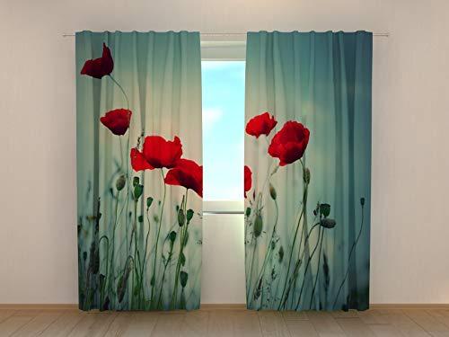 Wellmira Fotogardinen, Vorhang mit Fotodruck, Fotovorhang mit Motiv, Bedruckte Gardine, Maßanfertigung (Blackout, 145x240 cm)