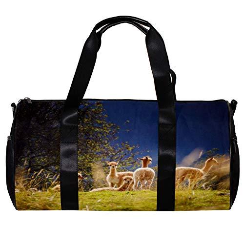 Bolsa de deporte redonda con correa de hombro desmontable para bebés, llamas, campo, alpacas, animales, bolsa de entrenamiento para mujeres y hombres