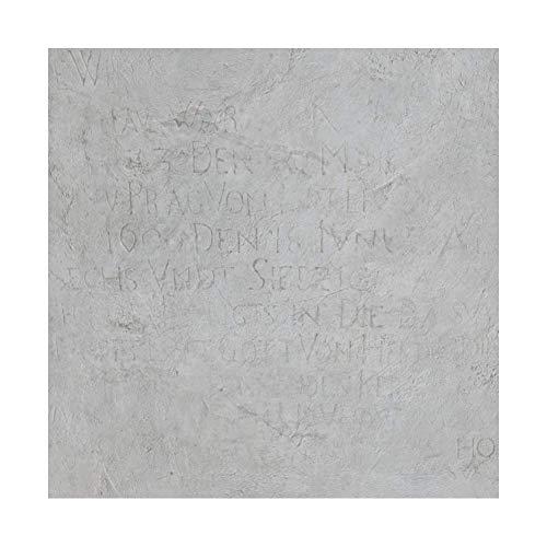 FeiFan Selbstklebend PVC Laminat Dielen,Marmoreffekt rutschfest Wasserfest Vinylboden Bodenbelag Für Küche, Badezimmer, Wohnzimmer, Esszimmer 60X60cm,V