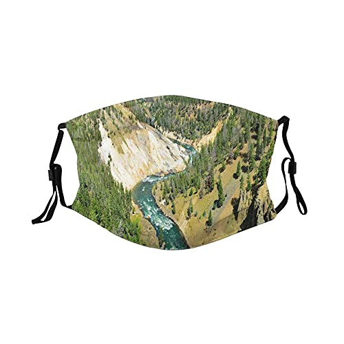 Fashion 3D Face Protect Printed,Calcite Springs Trees Panorama In Yellowstone