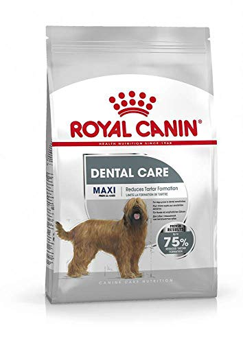 ROYAL CANIN Maxi Dental Care - 3 kg