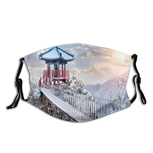 LLiopn Fashion 3D Face Protect Printed Gesichts-Mundschutz,Asian Culture Photography Building Snowy Landscape Guemosan South Korea