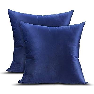 UVOGOM 2 Packs Velvet Pillow Covers, 18x18 Inch...