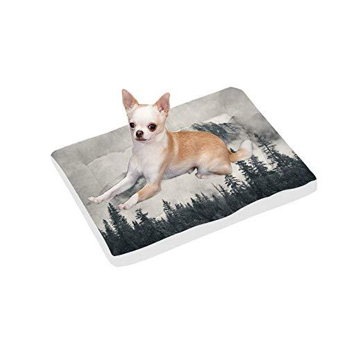 washable dog pee pads canada