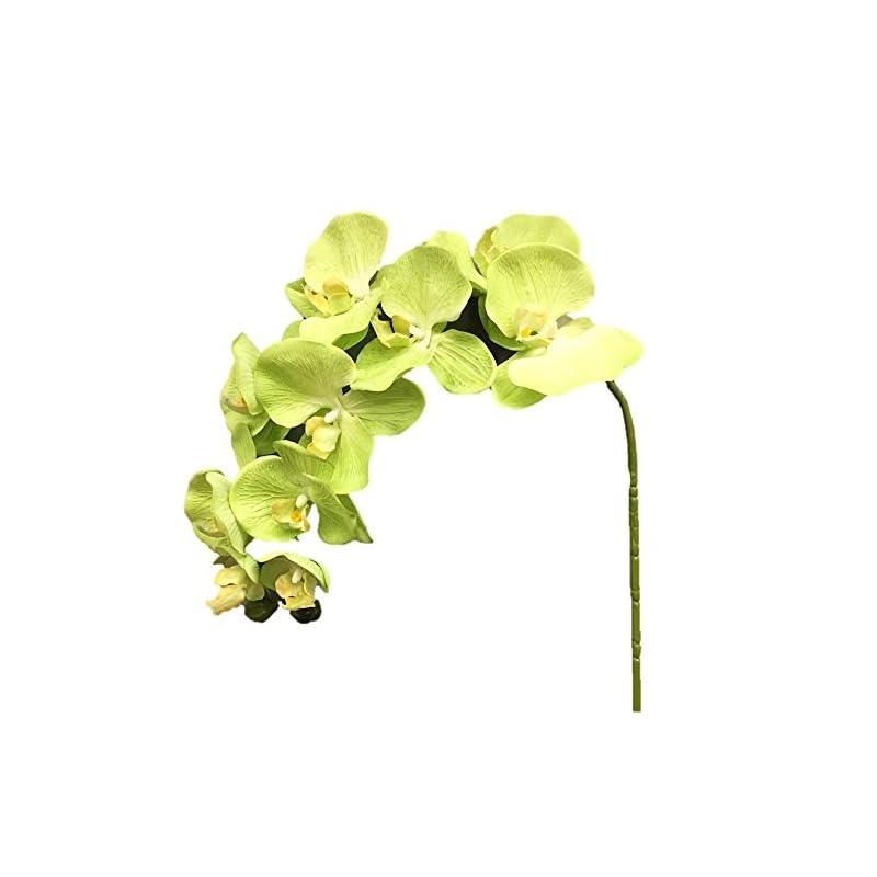"""silk flower arrangements silk flower garden 2 pcs artificial butterfly orchid spray 38"""", green apple"""