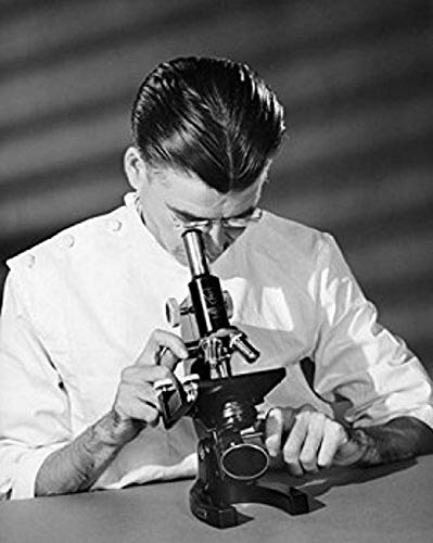 Scientist looking through a microscope in a laboratory Poster Print (18 x 24)