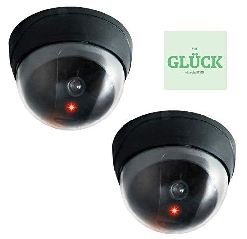 Set. 2 stuks domcamera dummys, camera-trap met LED, Fake Cam + gratis gelukssticker