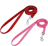 Nylon Dog Leashes Review and Comparison