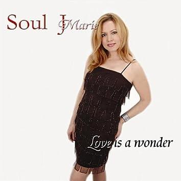 Love is a Wonder