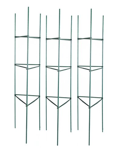 Tingyuan Tomato Cages 60 Inches Tomato Plant Stakes, Pack of 3