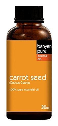 Zanahoria (semillas) 100% puro grado Terapéutico Aceite Esencial por Banyan Pure–30ml