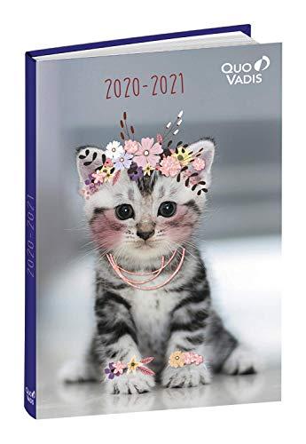Quo Vadis 128826Q - Agenda Escolar 2020/2021, 1 día por página Multilingüe, 12 x 17 cm, Colección Amigos bonitos diseño Gato