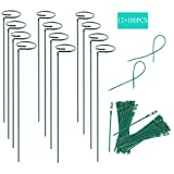 RAIKEDR 12 Pack Plant Stake Support, Garden Single Stem Support Stake Plant Cage Support Rings, Single Stem Plant Support Stakes, for Tomatoes, Peony, Lily, Rose, Flowers Amaryllis (Green)