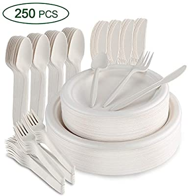 Aitsite 250 Pcs Compostable Disposable Dinnerware Set Includes Biodegradable Paper Plates Forks Knives Spoons for Wedding Party Camping Made of Natural Eco Friendly Sugar Cane Fibers (White)