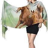 Cálido Bufandas de Invierno Corriendo caballos castaños yegua y potro en la pradera escénica día de verano al aire libre Pashmina Chales mujer Bufandas