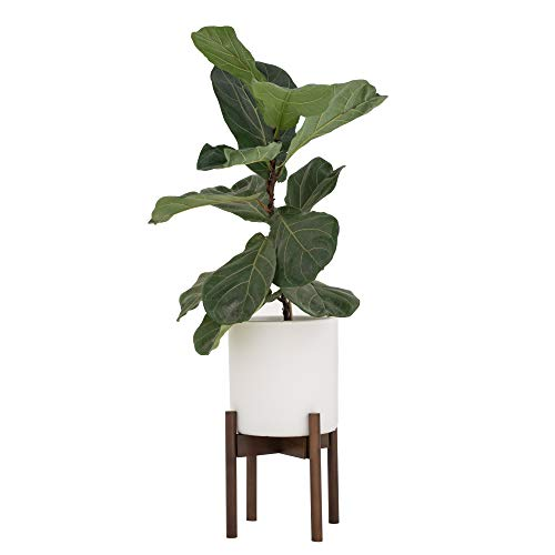 Our #5 Pick is the Sona Home Adjustable Mid Century Plant Stand