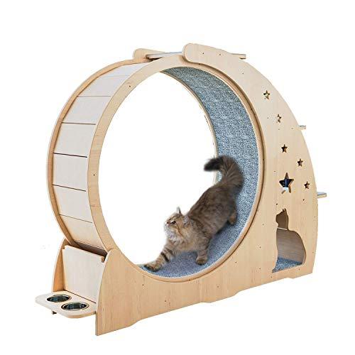 Katze Kratz Katze Rad Holz Katze Klettergerüst Comfortable Cat Activity Center Cat House Sport Laufrad Four Seasons Universal-Kratzbaum Kratz (Farbe: Wood) dljyy (Color : Wood)