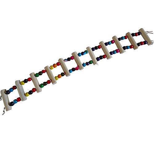 Cage Accessoires et Bird Toys -- 59,7 cm fait à la main les perroquets Hamster à Asmara/pont