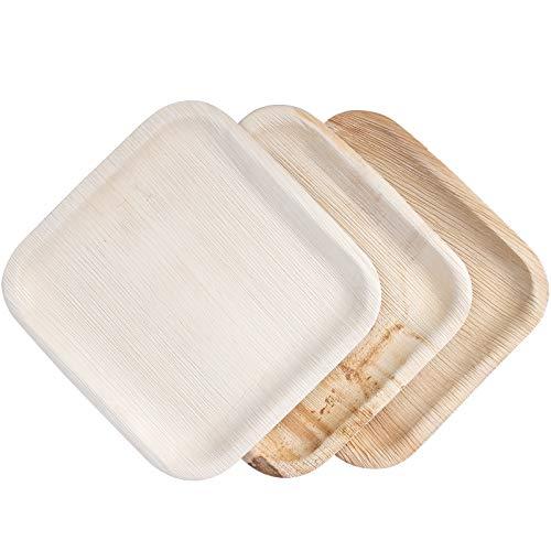 IMSCO Palmblatt-Einweggeschirr | 25 Teller quadratisch 25x25cm | hochwertig, unbehandelt, umweltfreundlich, biologisch, kompostierbar, Party-Wegwerf-Geschirr