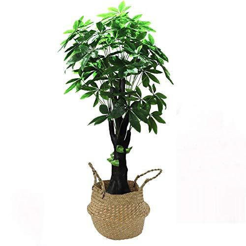 Yipianyun Palme Palmenbaum Königspalme, Cocospalme Kunstpflanze Kunstbaum Künstliche Pflanze Echtholz Hochzeit/Party Empfangstisch Blumen,Natural,160cm