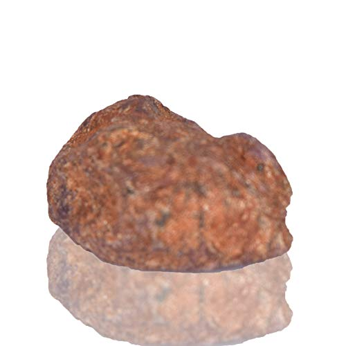 Real Gems Increíble Piedra Preciosa Natural de rubí en Bruto de Estrella 35.00 CT Crudo sin Tratar áspero Piedra Preciosa de rubí de Estrella roja Suelta