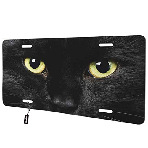 Beabes Black Cat with Yellow Eyes Front License Plate Cover,Cool Animal with Tears Staring at You Decorative License Plates for Car,Novelty Auto Car Tag Vanity Plates Gift for Men Women 6x12 Inch