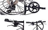 CHRISSON 20 Zoll E-Bike Klapprad EF2 Weiss matt - E-Faltrad mit Bafang Nabenmotor 250W, 36V, 30 Nm, Pedelec Faltrad für Damen und Herren, praktisches Elektro Klapprad - 7