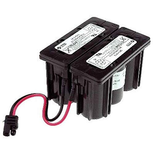 NX - Rasenmäher Batterie BS1225 / FBS1225 Cyclon AGM 12V 2.5Ah - 0819-0024 ; 981