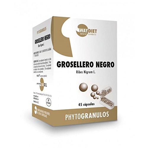 Waydiet Natural Grosellero Negro Phytogranulos - 200 gr