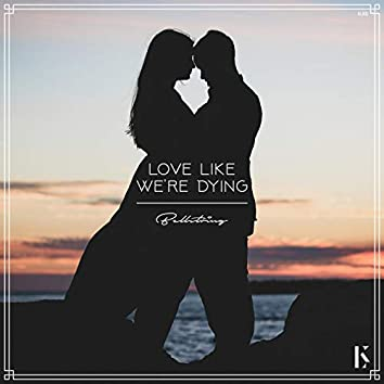 Love Like We're Dying (with. Bellstring)