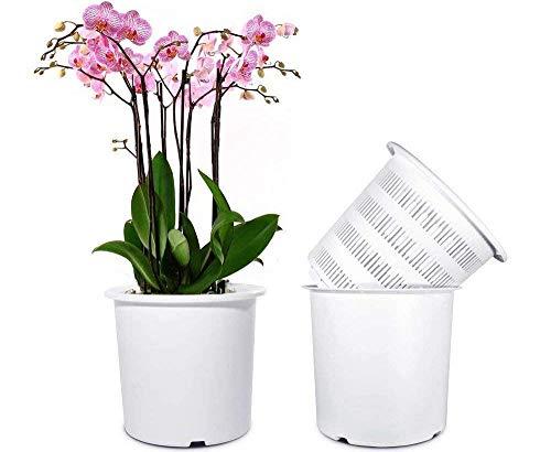 Mkouo 7 1/2 Pulgadas orquídea - Macetas con Agujeros y Malla, 2 Inter
