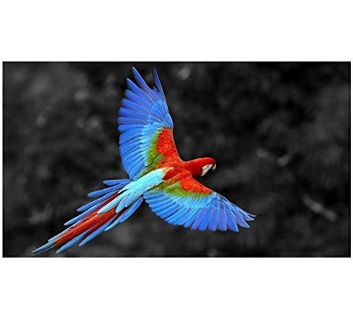 HU0QWPKU Kleur vliegende vogel 5D DIY diamant tekening ronde boren volledige diamanten kunst tekening wanddecoratie volledige kit kruissteek woonkamer decor 70 x 140 cm.