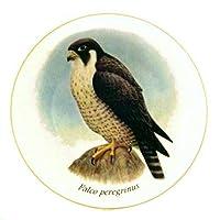 Peregrine Falcon - デンマーク製 最高級のヨーロッパの磁器製 最高品質 Lekvenのデザイン 動物好きの方へのプレゼントに最適。 サイズ - 7.61インチ。