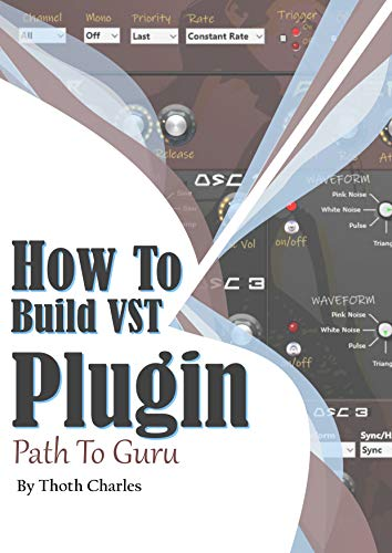 How to Build VST Plugin: Path to Guru (English Edition)