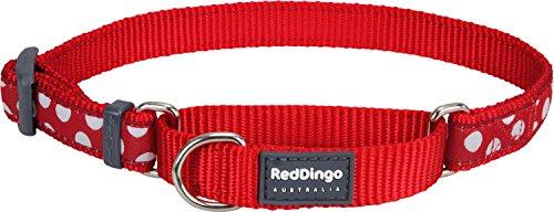 Red Dingo Martingale Hundehalsband, 32–47x2cm, Rot mit weißen Punkten