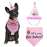 YUEBAOBEI Pañuelo Feliz Cumpleaños con Bandanas Y Sombrero Fiesta, Bufanda Suave Y Adorable Sombrero para Fiesta, Regalo De Cumpleaños para Mascotas,Azul