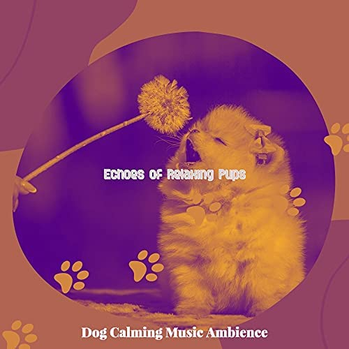 Dog Calming Music Ambience